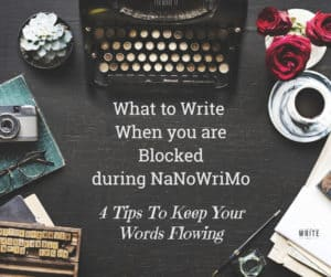 nanowrimo tips: what to write during nanowrimo